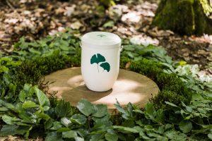 Maruschke friedwald-urne_01_k-300x200 Bestattungsarten